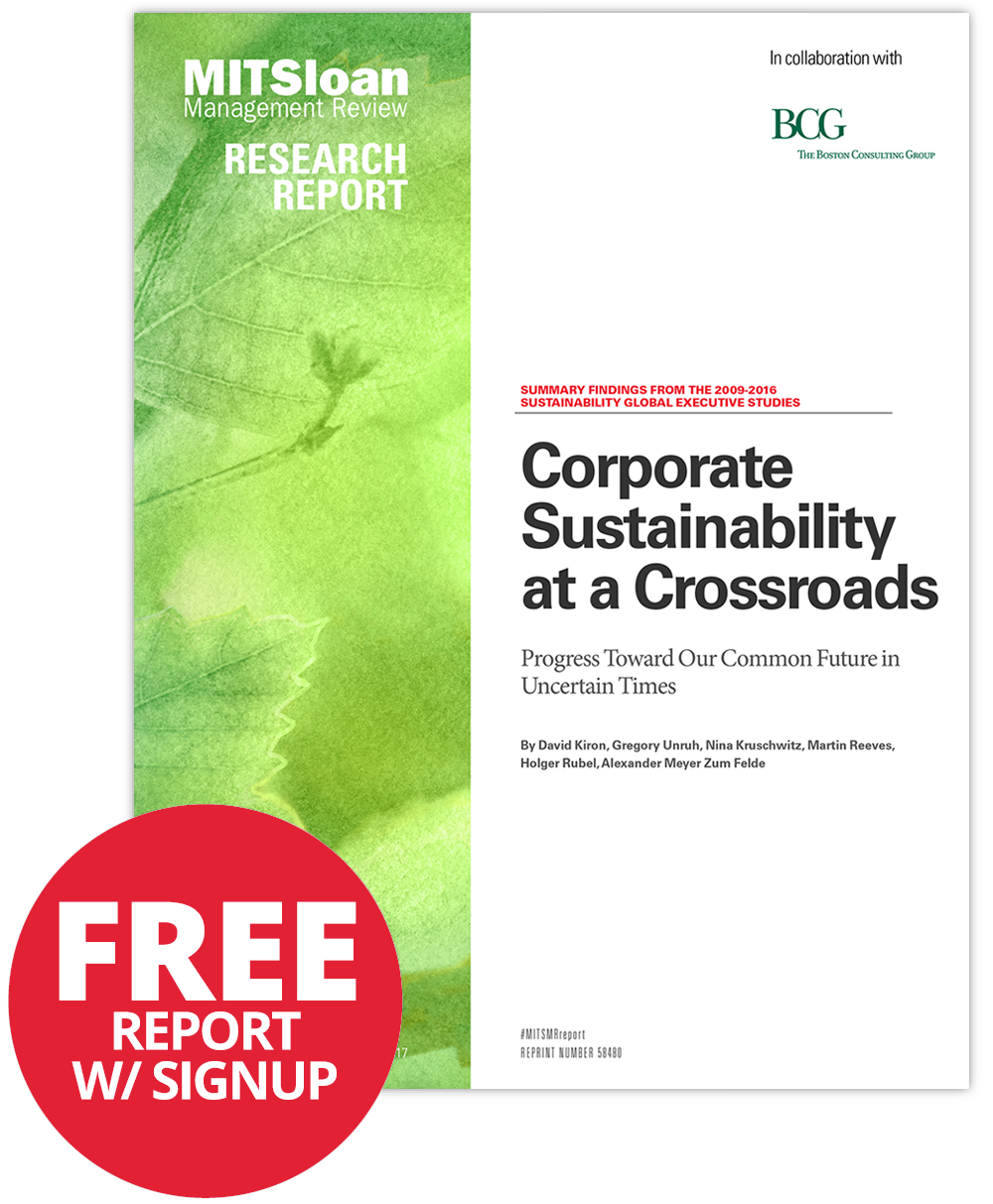 2017 Sustainability Global Executive Study and Research Report